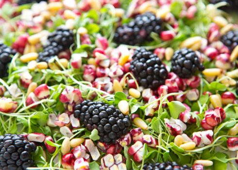 micro_greens_blackberry_salad_a_house_in_the_hills_2