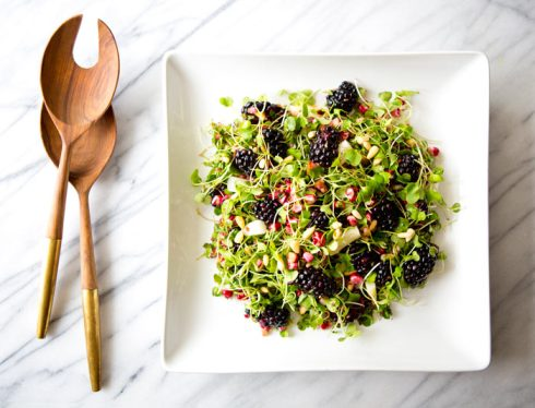 micro_greens_blackberry_salad_a_house_in_the_hills_6